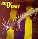 bush tetras 99 records